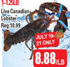 Live Canadian Lobster