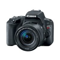 Canon Eos Rebel Sl2 W/18-55mm Stm Lens