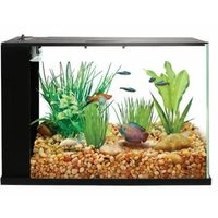 Desktop Aquarium Starter Kits